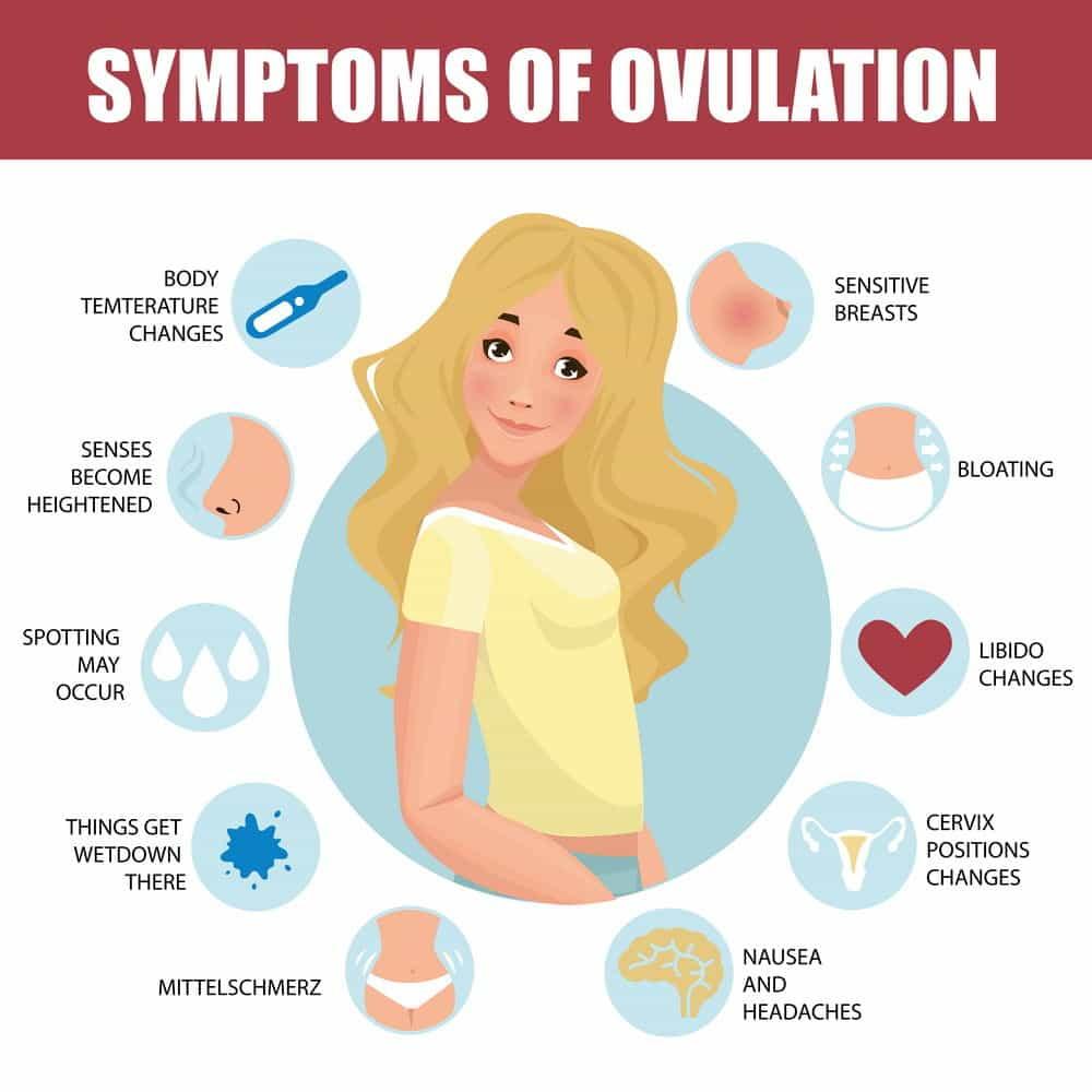 Ovulation Pain Symptoms